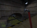 Sewer video01.png